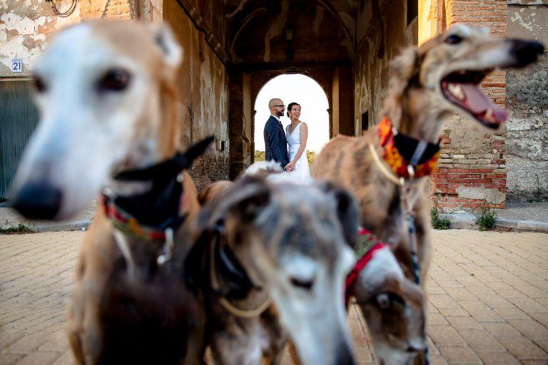 Boda en Jardines del Monasterio de Ester y Goyo + www.patriciabara.com